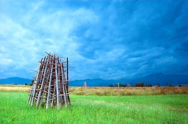 草原での薪のスタック