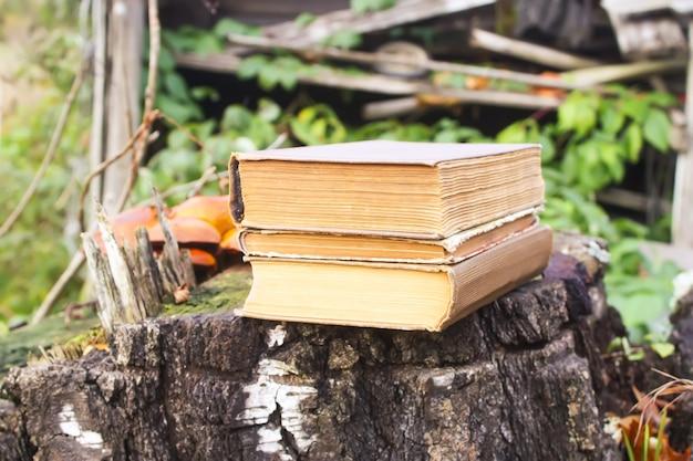 가 공원에서 나무 그루터기에 오래 된 책의 스택