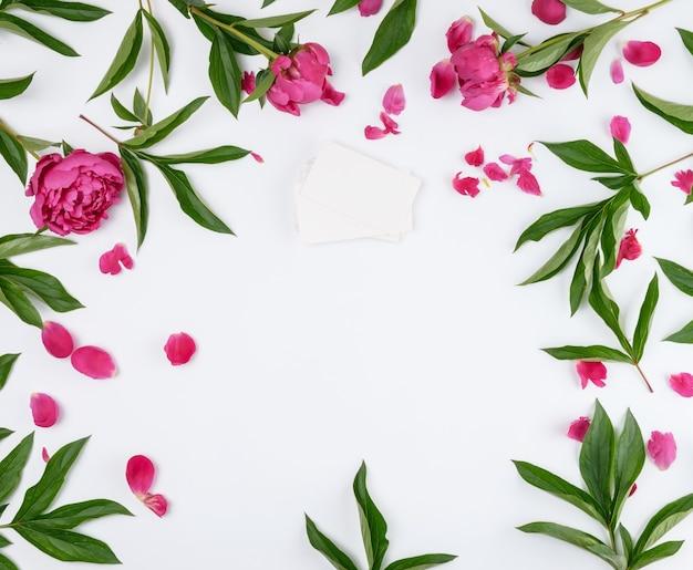 Стек прямоугольных пустых бумажных визиток и красных цветущих пионов с зелеными листьями на белом фоне, пустое пространство в середине, вид сверху