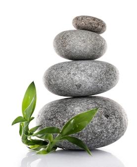 Стек спа-камней с зелеными листьями на белом