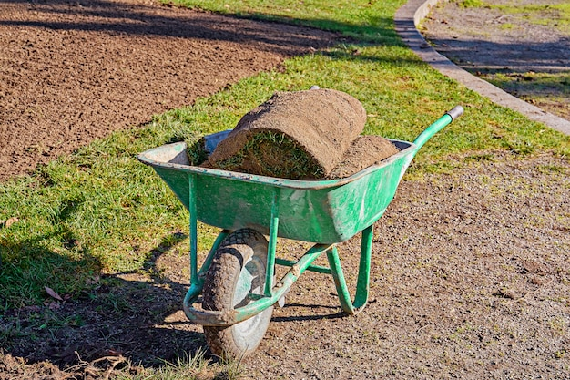 Stack of rolled grass sod for lawns and gardening in garden wheelbarrow