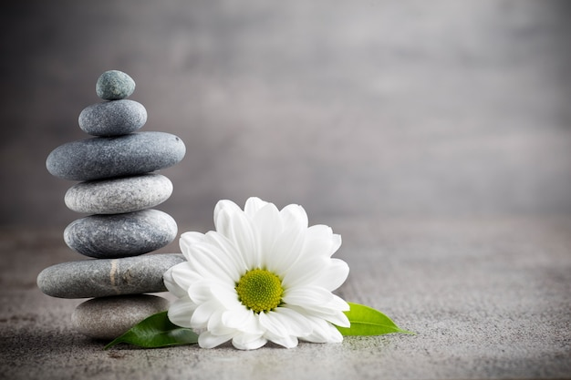 Stack of stones and daisy flower