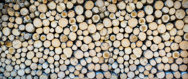 Stack of tree trunks. texture background wallpaper