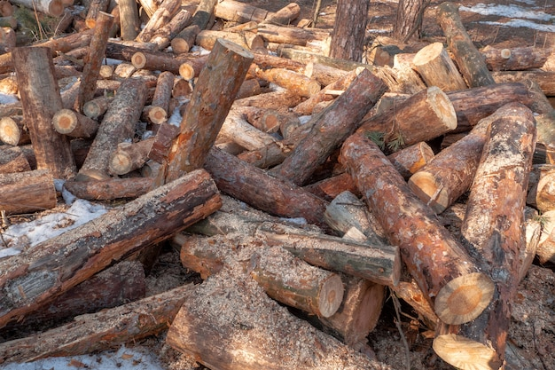 Stacked firewood in a pile outdoors close-up.