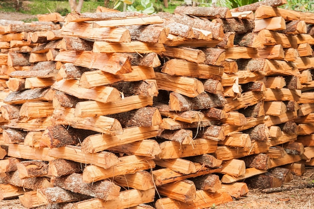 Stacked of firewood stock, sunlight for drying firewood