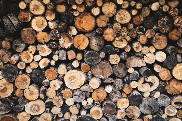 Stacked logs of wood