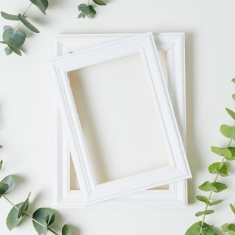Stacked of white border frames with green leaves twig on white backdrop