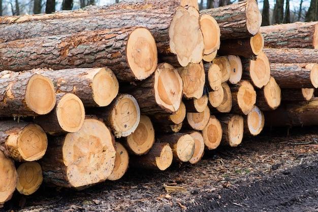 建設用建物、背景用の積み木の松材