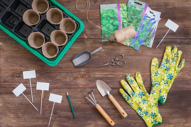Stages of planting seeds, preparation, gardeners tools and utensils, colorful gloves, organic pots