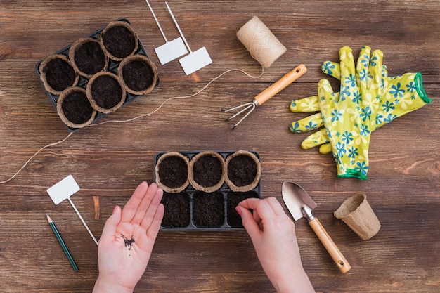 Stages of planting seeds, woman hands, gardeners tools and utensils
