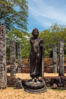 Окрашивание статуи будды в древних руинах полоннарува, шри-ланка