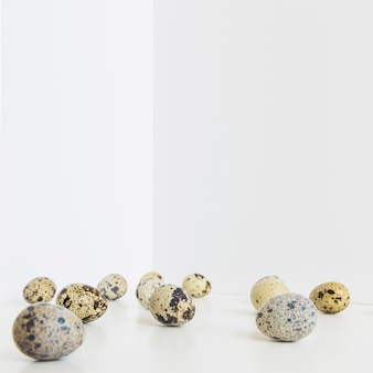 Stained quail eggs on white