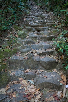 Stair made from rock and cement of namtok phliu national park chanthaburi