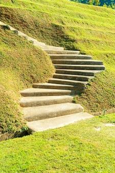 잔디 언덕에 계단 단계