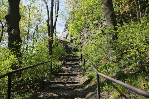 Stairs to ruins of andelska hora castle