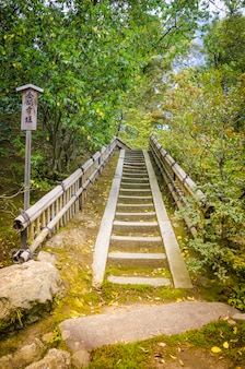 Stairway to the nature. kyoto. japan