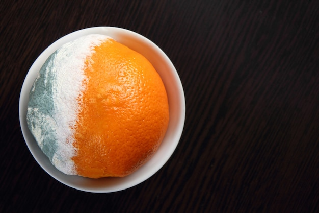 Несвежий апельсин с плесенью на белом блюдце лежит на темной деревянной поверхности.