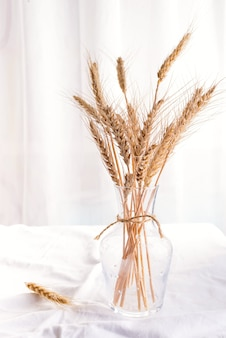 Stalks of organic wheat in vase on white table, copy space