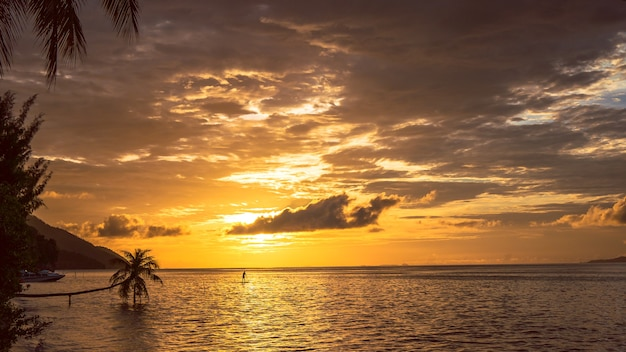 クリ島のサンセットでスタンドアップパドルsup。ラジャアンパット、インドネシア、西パプア。