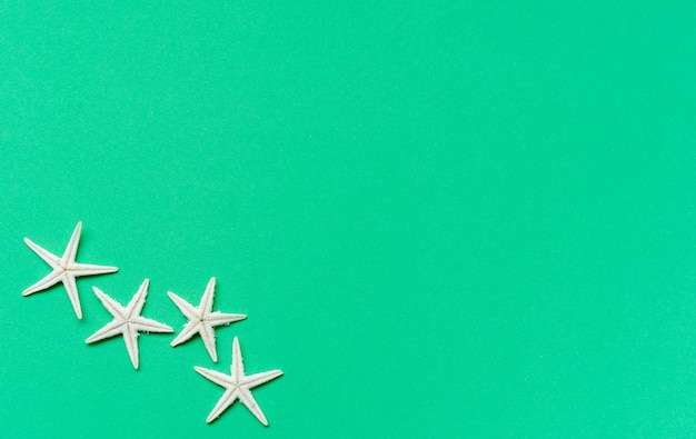 Star fish on  green background  for summer season concept