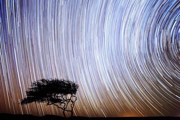 Star tracks in the night sky