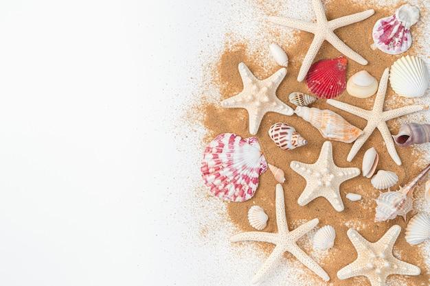 Морские звезды и различные ракушки на песчаном пляже на светлой стене. вид сверху, копия пространства.