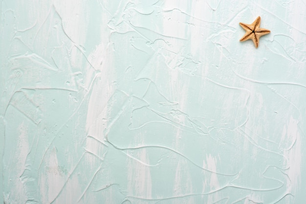Starfish on a blue surface. minimalistic background