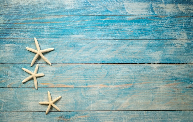 Starfish on a bright blue background