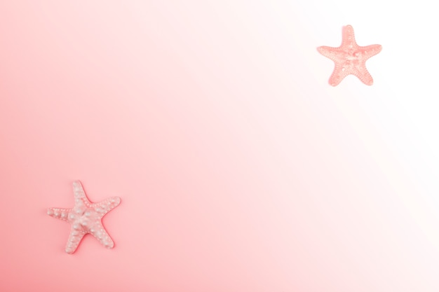 Starfish on the corner of the pink gradient background