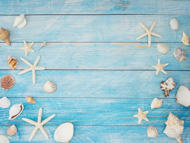 Starfish on light blue background.