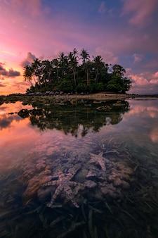 Морские звезды на пляже моря на заходе солнца, тропическом пляже и красивом заходе солнца в пхукете таиланде.