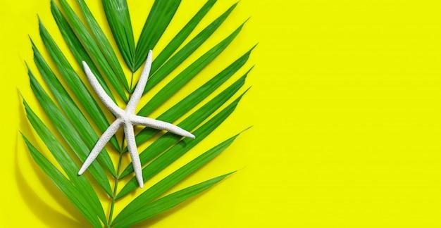 Морская звезда на тропических пальмовых листьях на желтом фоне. наслаждайтесь концепцией летнего отдыха. копировать пространство