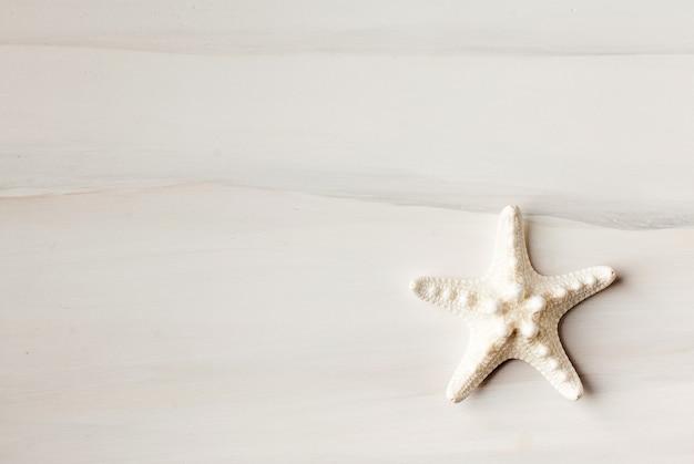 Морская звезда на деревянном столе