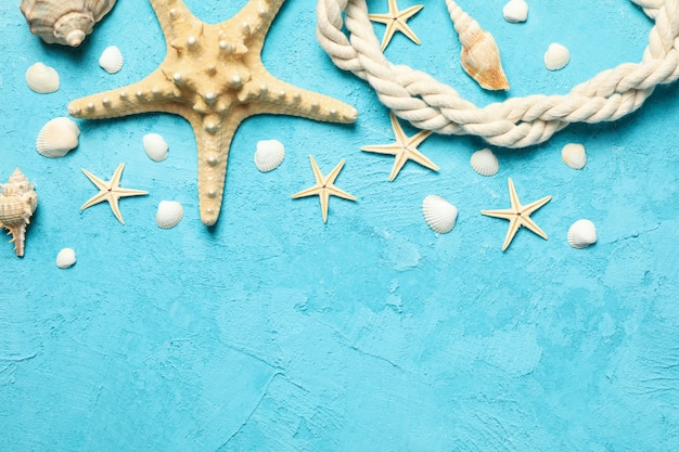 Starfish, rope and seashells on blue, space for text