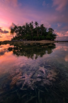Starfish on sea beach at sunset , tropical beach and beautiful sunset in phuket thailand.
