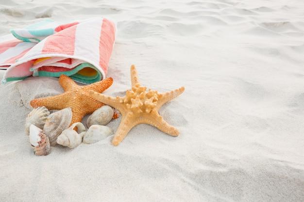 불가사리, 바다 조개 및 모래에 비치 담요
