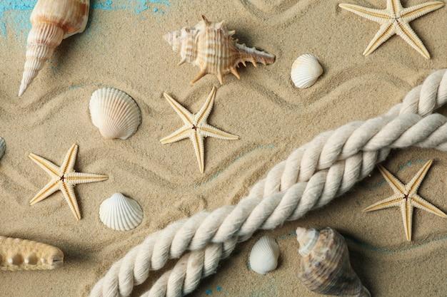 Starfish, seashells and rope on sea sand surface