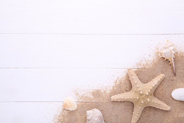 Starfish and seashells with sand on white wooden with copy space. summer concept