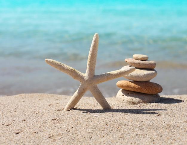 Starfish and  stones.