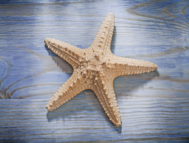 Starfish on wooden board top view spa concept