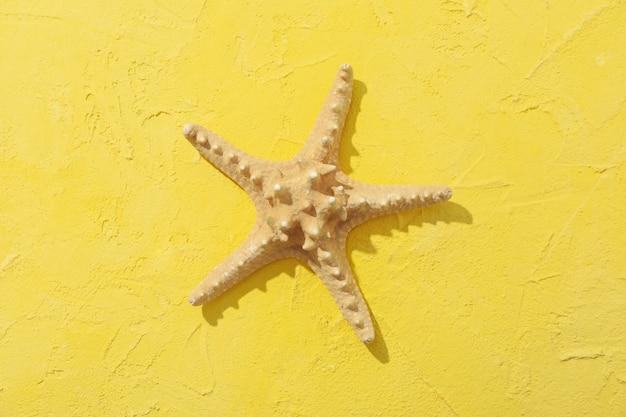 Starfish on yellow, top view. sea vacation