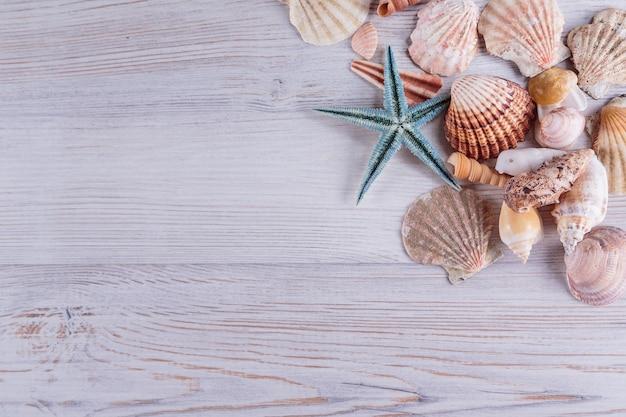 ヒトデと貝殻の白い素朴な木製の背景、トップビュー