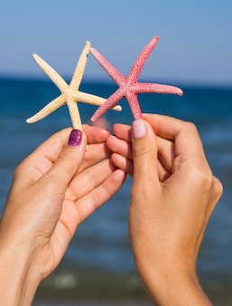 Starfishes being held next to the sea