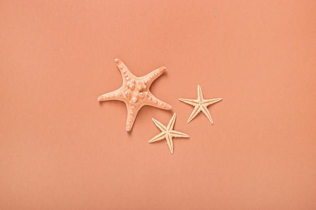 Морские звезды на коричневом фоне. концепция пляжа и отдыха. глобальное потепление. баннер. плоская планировка, вид сверху.