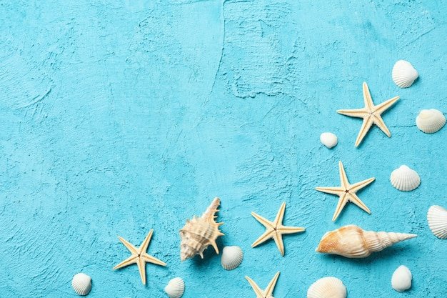 Starfishes and seashells on blue, space for text