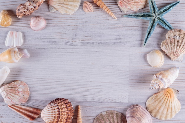 Starfishes and seashells on white rustic wooden background, top view