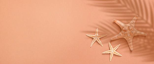 Морские звезды под тенью пальмы на коричневом фоне. концепция пляжа и отдыха. баннер. плоская планировка, вид сверху.