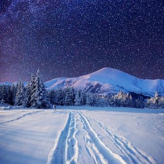 눈 덮인 겨울 밤에 별이 빛나는 하늘