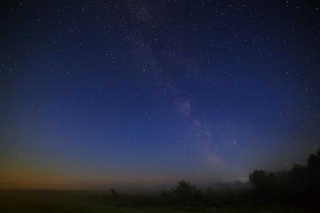 Stars of the milky way galaxy in the night sky. space in the background of the forest.