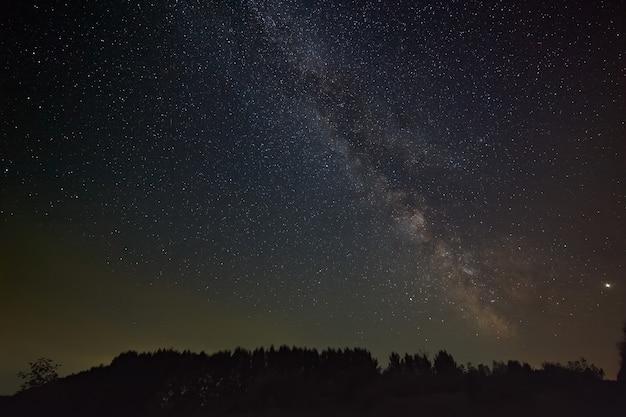 Звезды галактики млечный путь в ночном небе. космические объекты над лесом.